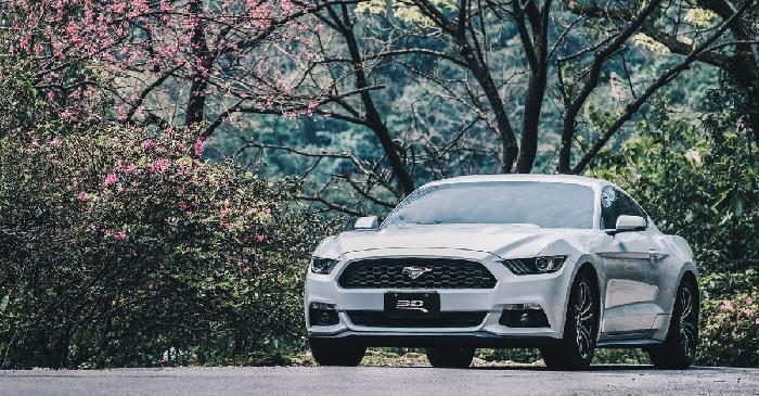 ▍一車一景點 / Mustang x 大尖山春日櫻雨
